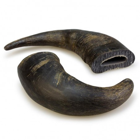 Cuerno de bufalo 20cm