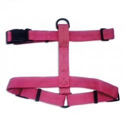 Collar nylon rojo 1 x 30 cm