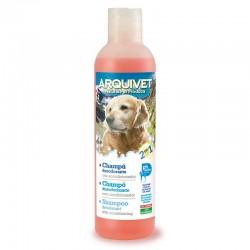 Champú desodorante 2 en 1 - 250 ml