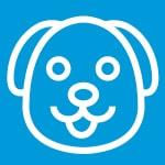 Comprar productos para perros online